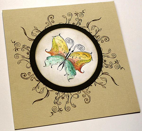 Schmetterling zieht Kreise