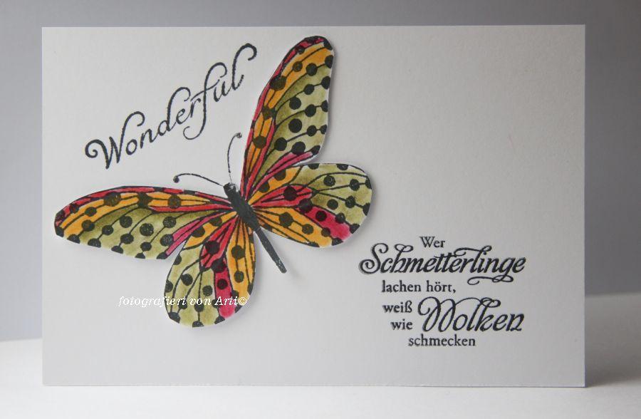 CAS-Schmetterling