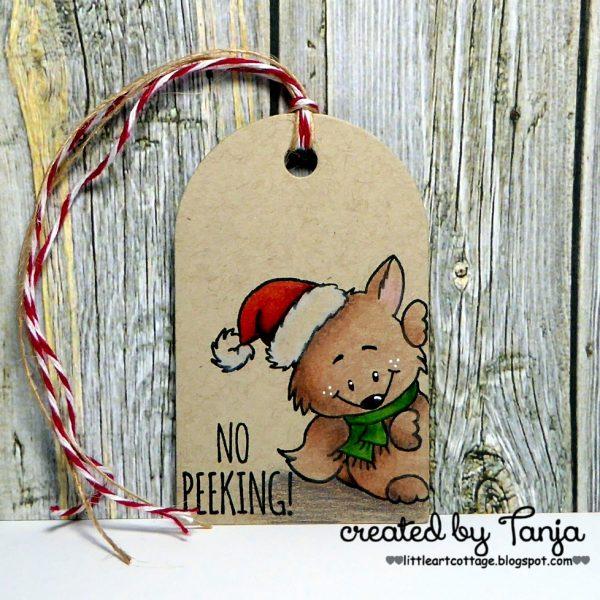 Christmas Tag #1 - No Peeking