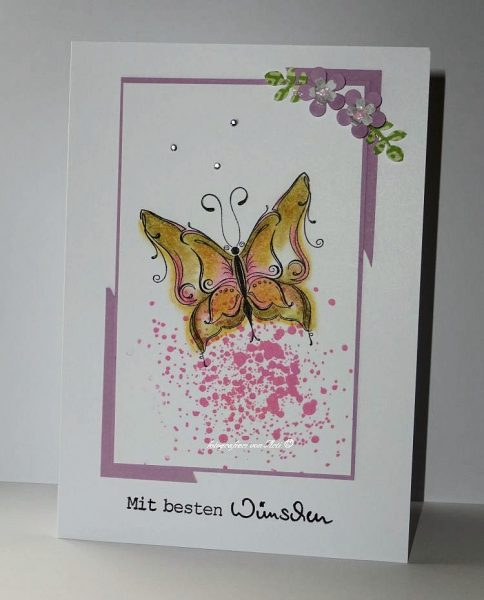 Schmetterlingswünsche