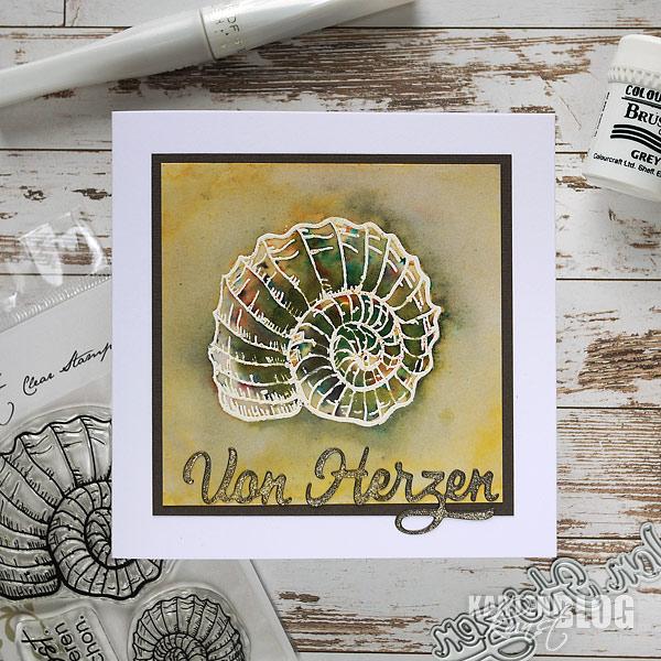 Ammonit zum Geburtstag