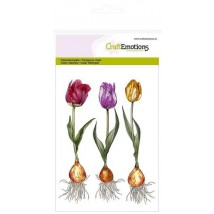 Craftemotions Clearstamps A6 - Tulips