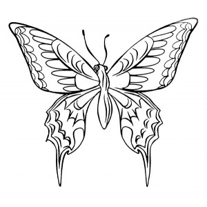 American Art Stamp - Butterfly #2