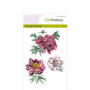 CraftEmotions Clear Stamps - Pfingstrosen