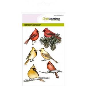 CraftEmotions Clear Stamps - Kardinal-Vögel