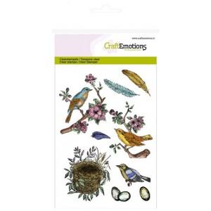 CraftEmotions Clear Stamps - Vögel, Federn & Nester