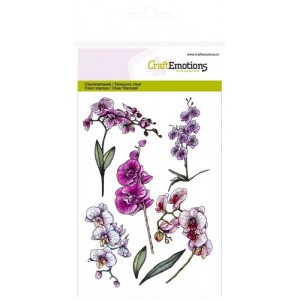 CraftEmotions Clear Stamps - Orchideen-Zweige