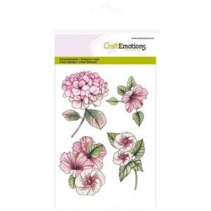 CraftEmotions Clear Stamps - Hortensien und Hibiscus