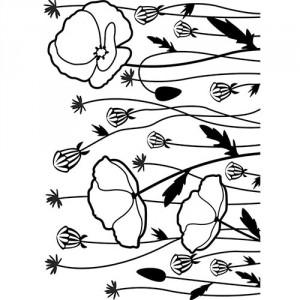 Darice Hintergrund-Prägeschablone - Poppy Field